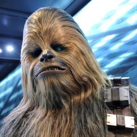 Chewbacca of Starwars